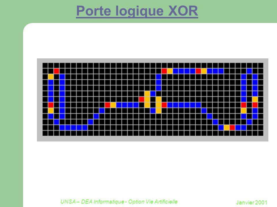 Janvier 2001 UNSA – DEA Informatique - Option Vie Artificielle Porte logique XOR