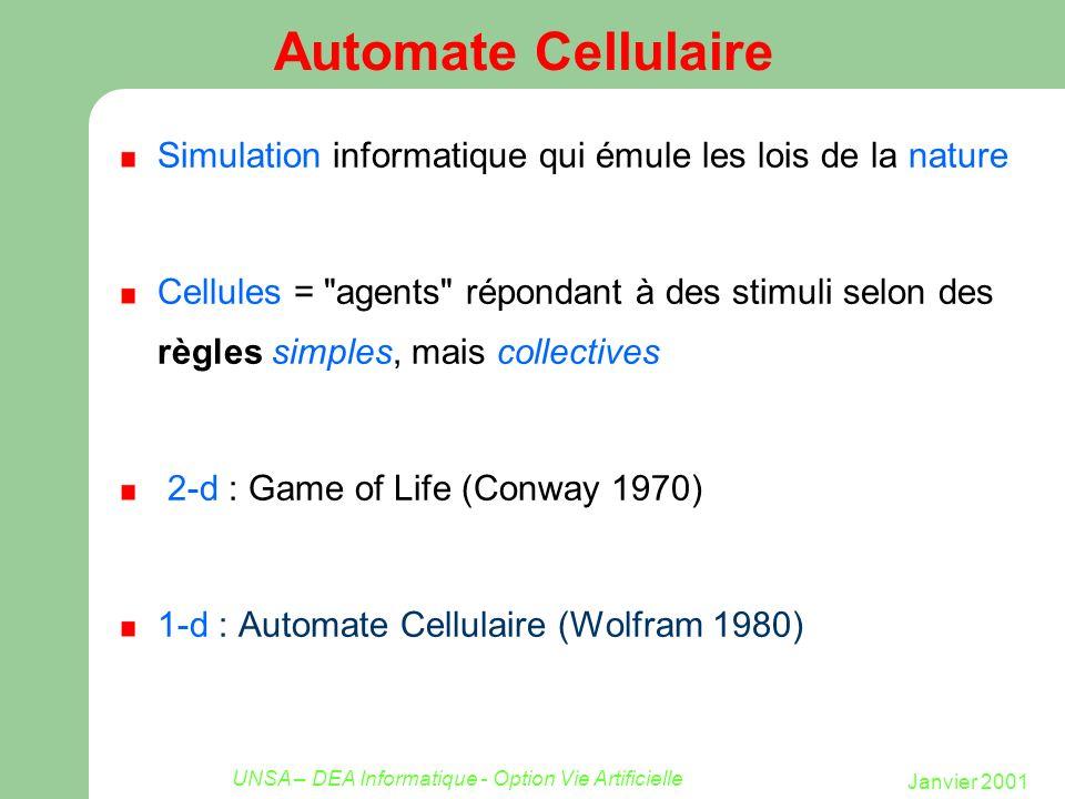 Janvier 2001 UNSA – DEA Informatique - Option Vie Artificielle Automate Cellulaire Simulation informatique qui émule les lois de la nature Cellules =