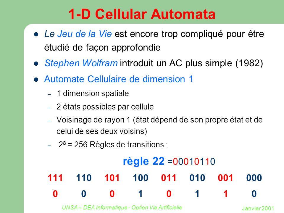 Janvier 2001 UNSA – DEA Informatique - Option Vie Artificielle 1-D Cellular Automata Le Jeu de la Vie est encore trop compliqué pour être étudié de fa