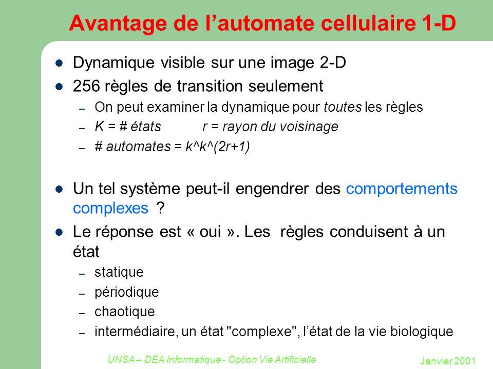 Janvier 2001 UNSA – DEA Informatique - Option Vie Artificielle Avantage de lautomate cellulaire 1-D Dynamique visible sur une image 2-D 256 règles de
