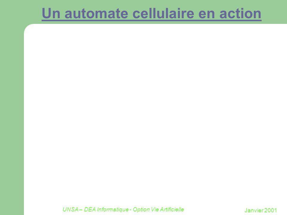 Janvier 2001 UNSA – DEA Informatique - Option Vie Artificielle Un automate cellulaire en action