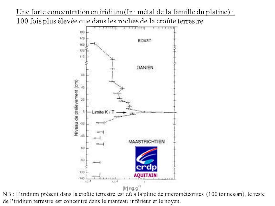 Une forte concentration en iridium (Ir : métal de la famille du platine) : 100 fois plus élevée que dans les roches de la croûte terrestre NB : Liridi