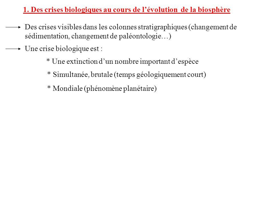 1. Des crises biologiques au cours de lévolution de la biosphère Des crises visibles dans les colonnes stratigraphiques (changement de sédimentation,