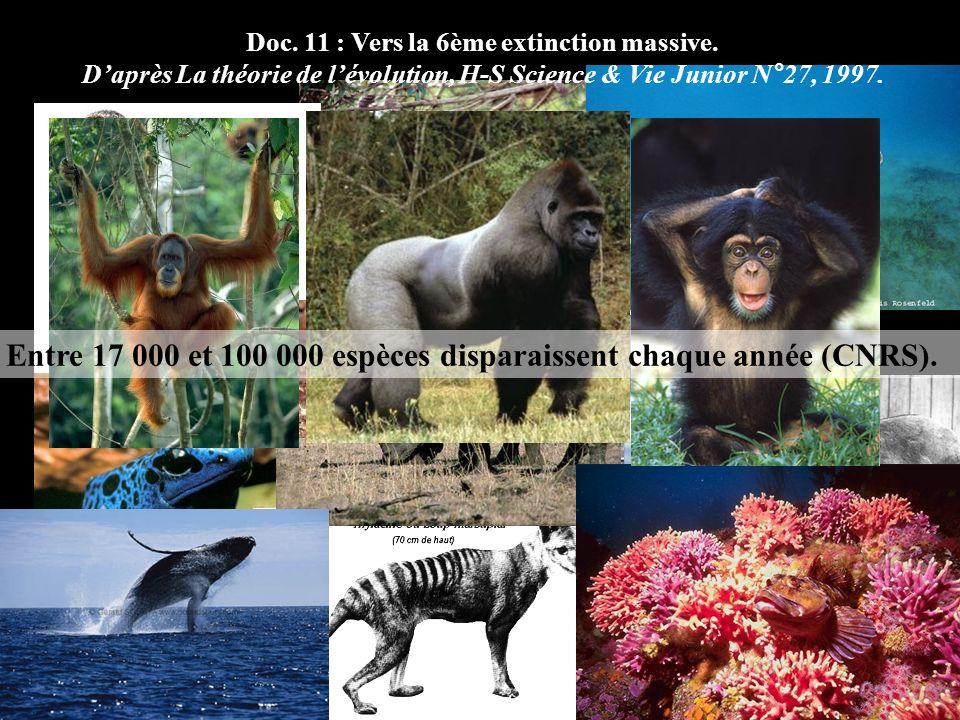 Entre 17 000 et 100 000 espèces disparaissent chaque année (CNRS). Doc. 11 : Vers la 6ème extinction massive. Daprès La théorie de lévolution, H-S Sci