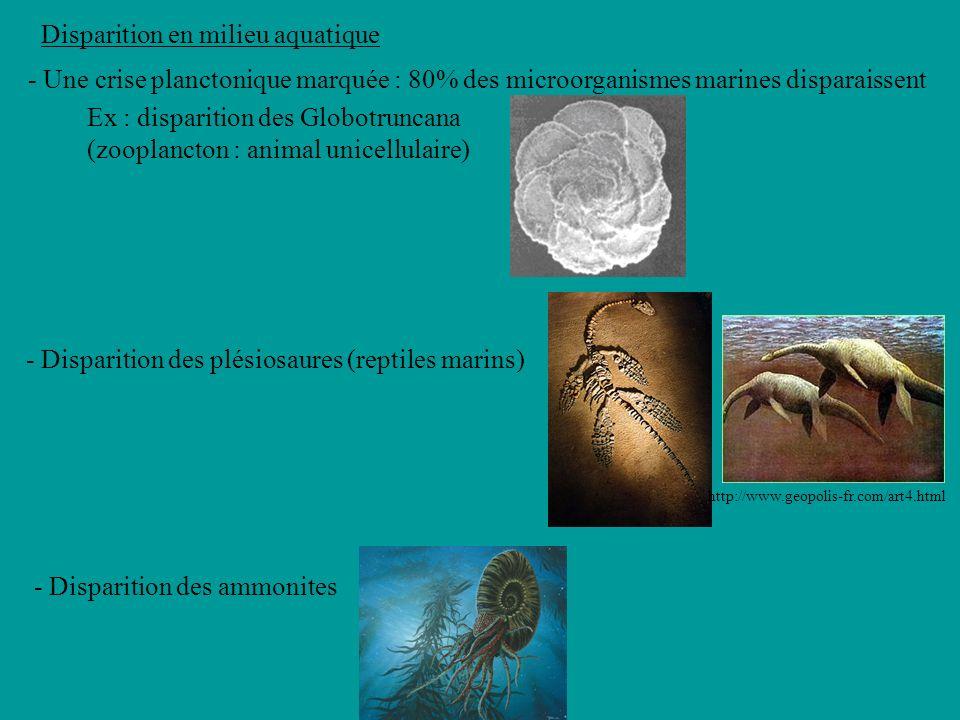 Cest une crise sélective Groupe Familles présentes Familles éteintes Taux dextinction Chondrichthyens (Requins & Raies)44818 Poissons osseux50612 Amphibiens1100 Reptiles (6 groupes)834554 1- Chéloniens (Tortues)15427 2- Lacertiliens (Lézards et Serpents)1616 3- Crocodiliens14536 4- Ptérosauriens (« reptiles volants »)22100 5- Plésiosauriens (« reptiles marins »)33100 6-Dinosauriens sauf Oiseaux21 100 6 -Oiseaux12975 Mammifères22523 Taux dextinction des Vertébrés au Maastrichtien (dernier étage du Crétacé, limite Crétacé/Tertiaire) daprès Benton M.J., Vertebrate Paleontology, Blackwell, 2000.Vertebrate Paleontology