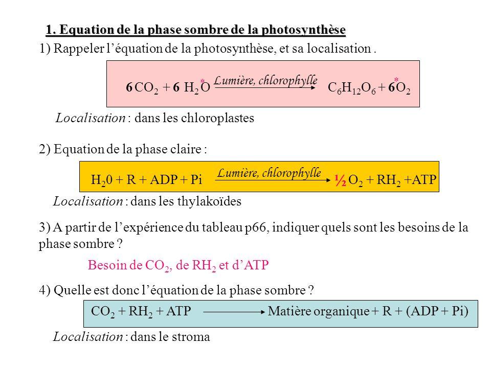 1. Equation de la phase sombre de la photosynthèse 1) Rappeler léquation de la photosynthèse, et sa localisation. CO 2 + H 2 O6 * * C 6 H 12 O 6 + O 2