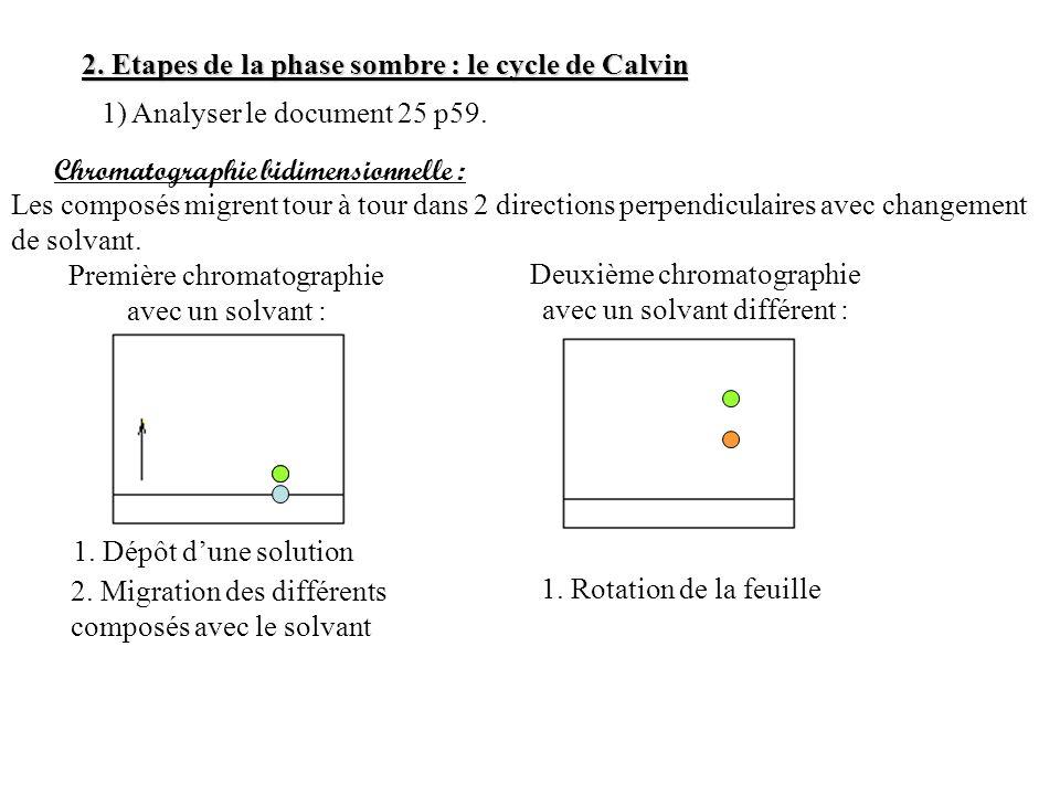 Paroi pecto-cellulosique et membrane accolée Cytoplasme Grains damidon colorés au lugol Dessin dune cellule de pomme de terre colorée au lugol et observée au microscope Grossissement x400 Attention à ne pas utiliser de couleurs dans un dessin dobservation