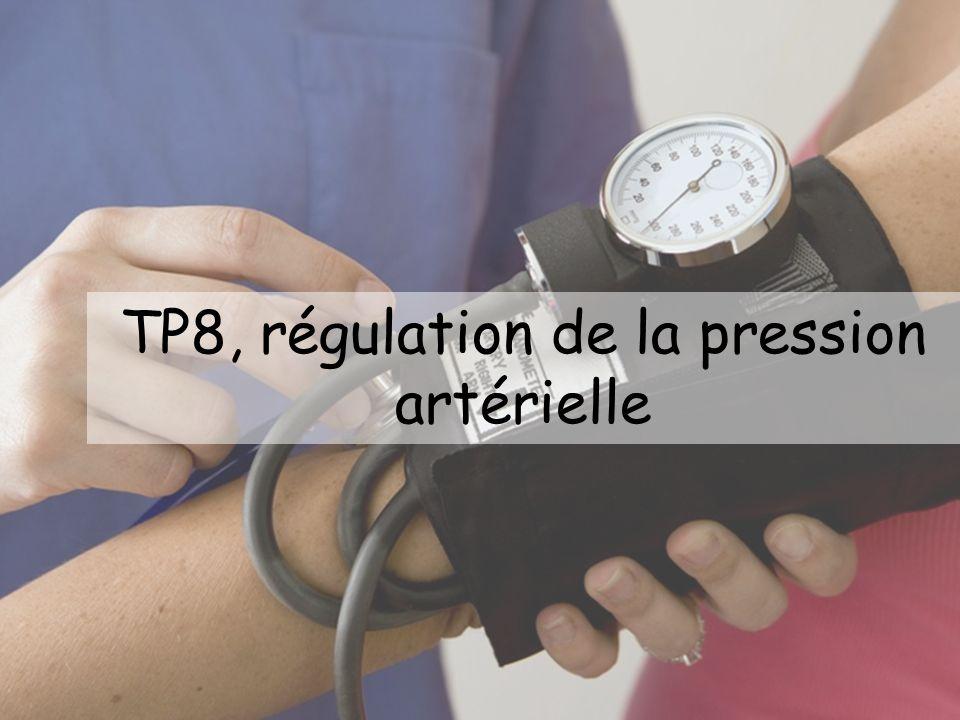 TP8, régulation de la pression artérielle