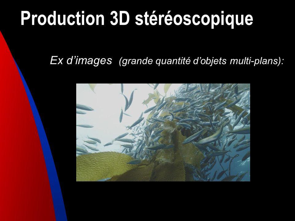 Production 3D stéréoscopique Ex dimages (grande quantité dobjets multi-plans):
