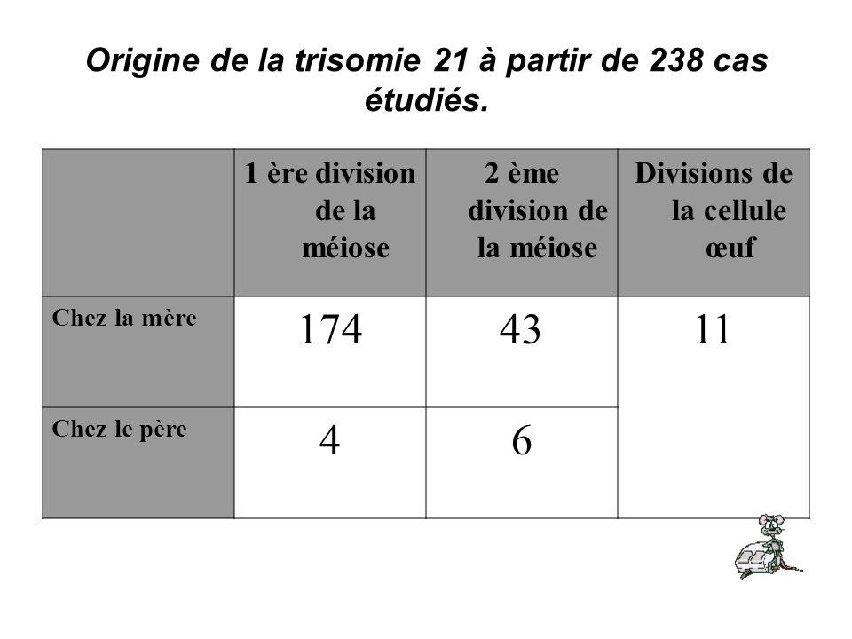 Origine de la trisomie 21 à partir de 238 cas étudiés. Divisions de la cellule œuf 2 ème division de la méiose 1 ère division de la méiose 1143174 Che
