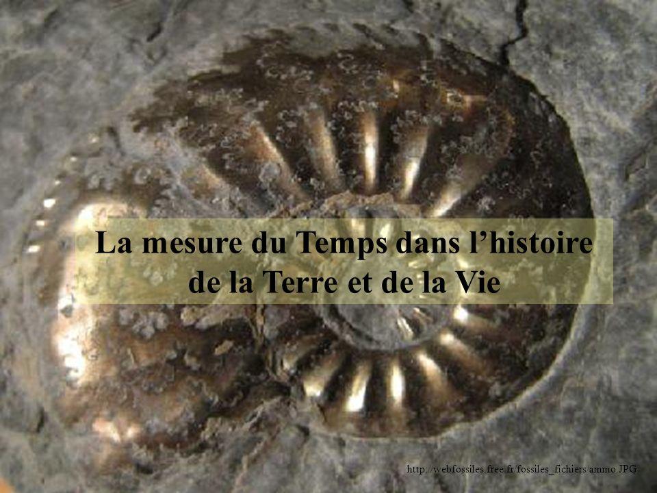 Principe didentité paléontologique Un fossile stratigraphique permet de dater à distance des couches géologiques.