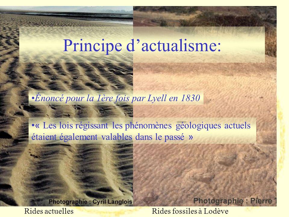 Enoncé du principe didentité paléontologique (3)