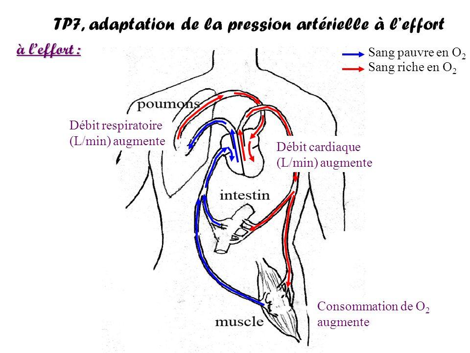 http://www.med.univ-angers.fr/discipline/labo_neuro/cours/cl/regulation_PAM_2006.pdf