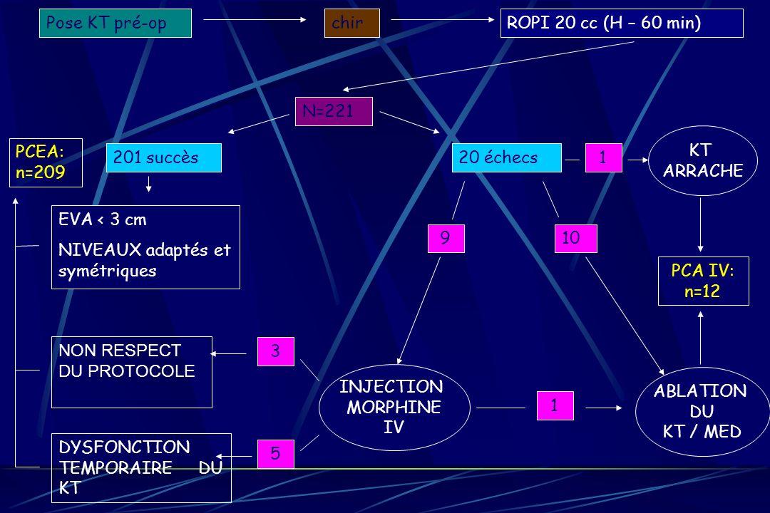 20 échecs201 succès EVA < 3 cm NIVEAUX adaptés et symétriques N=221 Pose KT pré-opchirROPI 20 cc (H – 60 min) ABLATION DU KT / MED 10 DYSFONCTION TEMP