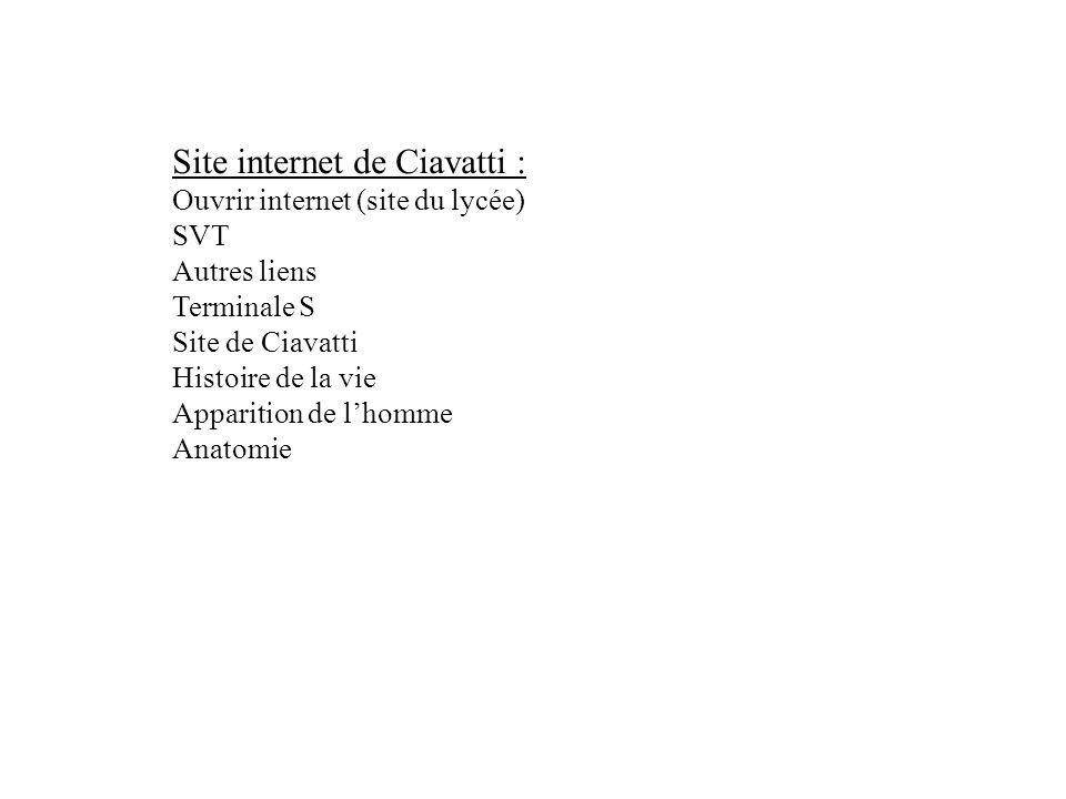 Site internet de Ciavatti : Ouvrir internet (site du lycée) SVT Autres liens Terminale S Site de Ciavatti Histoire de la vie Apparition de lhomme Anat