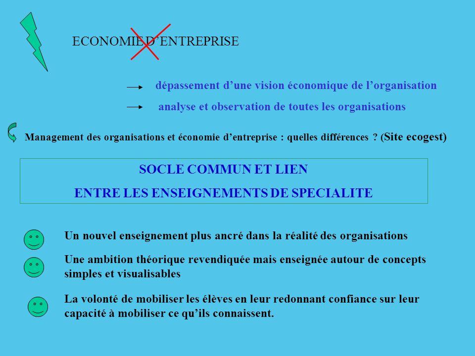 ECONOMIE DENTREPRISE dépassement dune vision économique de lorganisation analyse et observation de toutes les organisations Management des organisatio