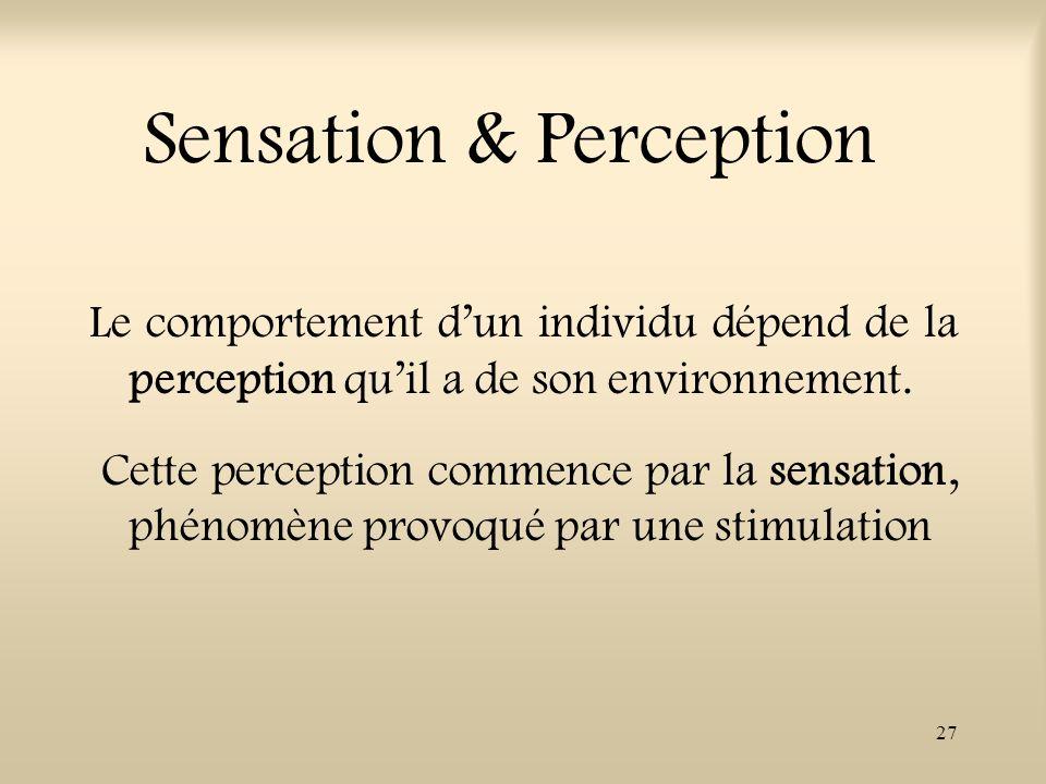 27 Sensation & Perception Le comportement dun individu dépend de la perception quil a de son environnement. Cette perception commence par la sensation