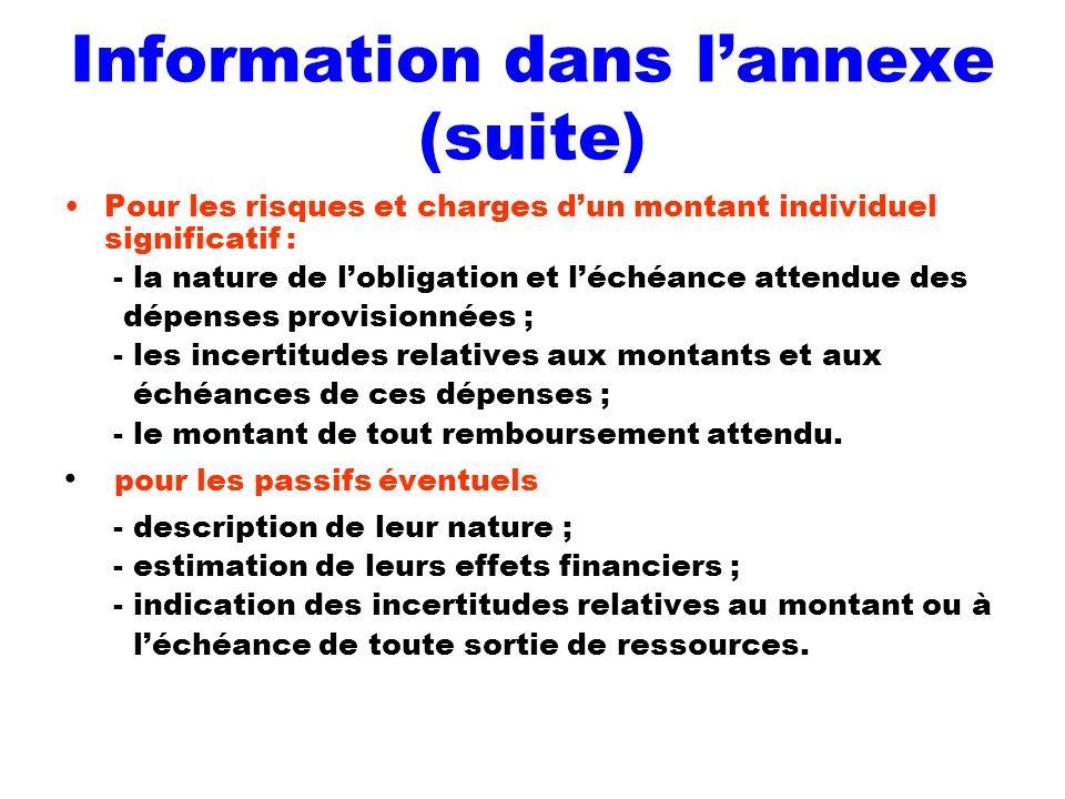 Information dans lannexe (suite) Pour les risques et charges dun montant individuel significatif : - la nature de lobligation et léchéance attendue de