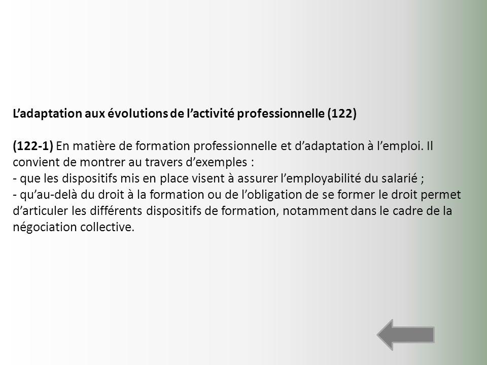 Ladaptation aux évolutions de lactivité professionnelle (122) (122-1) En matière de formation professionnelle et dadaptation à lemploi. Il convient de