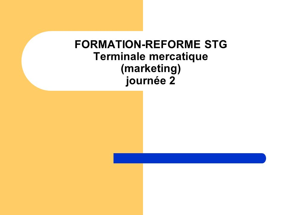FORMATION-REFORME STG Terminale mercatique (marketing) journée 2