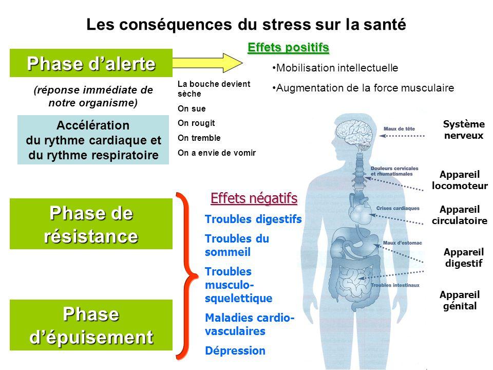 Phase dalerte Phase de résistance Phase dépuisement Les conséquences du stress sur la santé Effets positifs Mobilisation intellectuelle Augmentation d