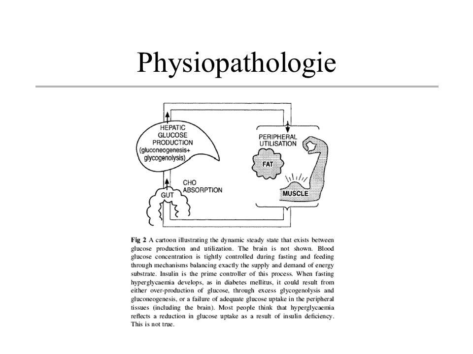 Hyperglycémie: équilibre dynamique entre lexcès de production hépatique et la clairance du glucose par utilisation (cerveau 50%, Tissus maigre 30%, Tissus adipeux 10% et GR 10%) et par élimination rénale Sajoute une hyperproduction de glucagon dans le Type I La captation cellulaire est normale ou haute Lutilisation peut être diminué par les corps cétoniques qui prennent sa place dans le cycle de krebs (cycle futile)