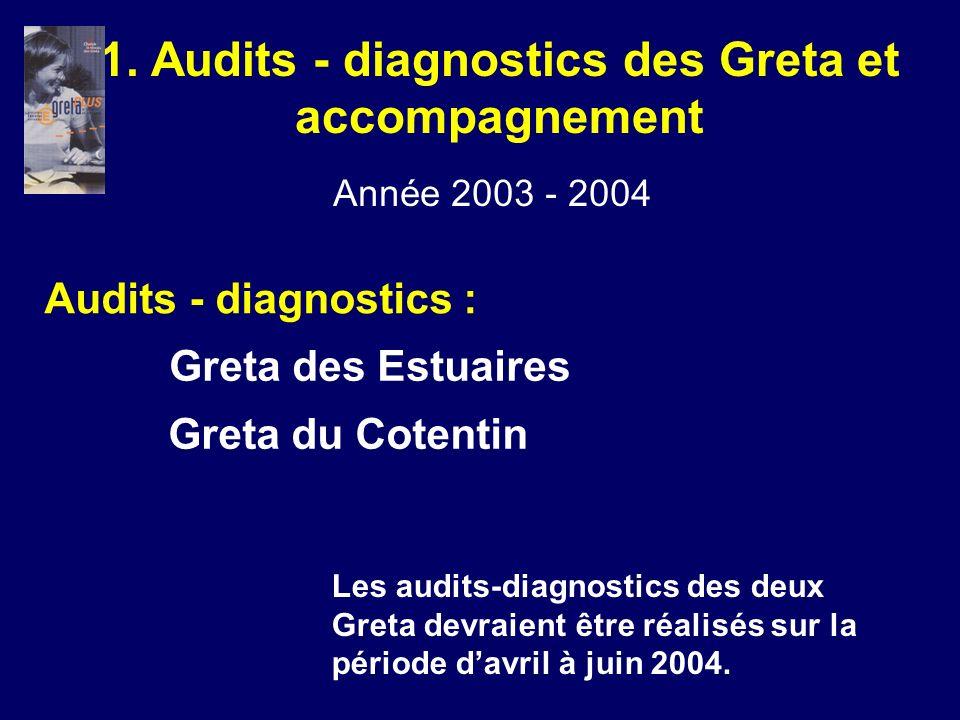 1. Audits - diagnostics des Greta et accompagnement Audits - diagnostics : Année 2003 - 2004 Greta des Estuaires Greta du Cotentin Les audits-diagnost