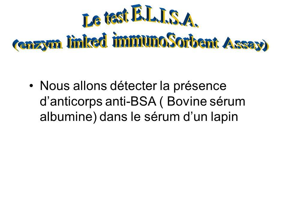 Nous allons détecter la présence danticorps anti-BSA ( Bovine sérum albumine) dans le sérum dun lapin