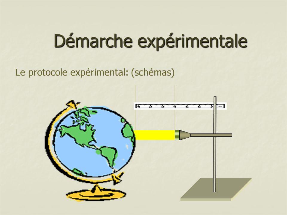 Démarche expérimentale Le protocole expérimental: (schémas)