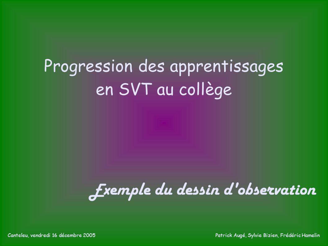 Progression des apprentissages en SVT au collège E xemple du dessin d observation Canteleu, vendredi 16 décembre 2005 Patrick Augé, Sylvie Bizien, Frédéric Hamelin