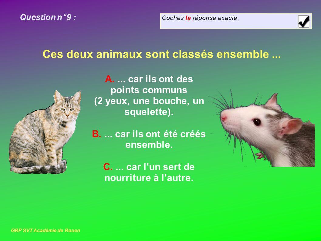 Cochez la réponse exacte. Question n° 9 : Ces deux animaux sont classés ensemble...