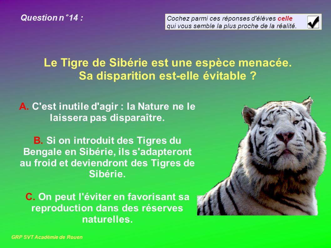 Question n° 14 : Le Tigre de Sibérie est une espèce menacée.