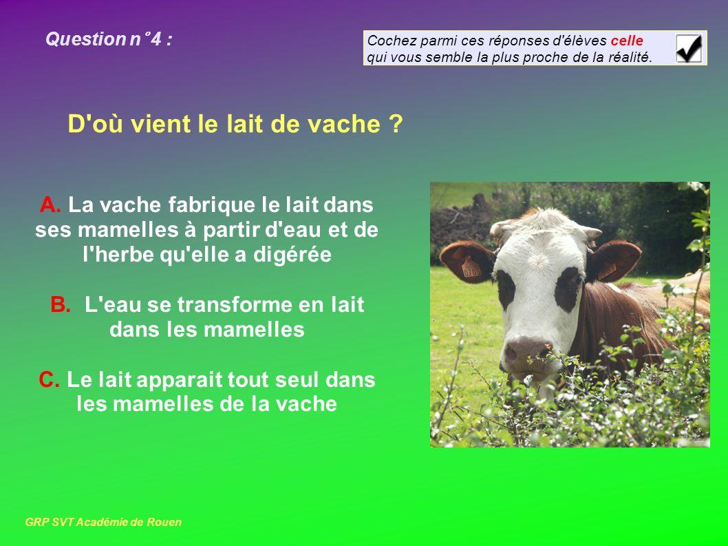 Question n° 4 : D où vient le lait de vache .