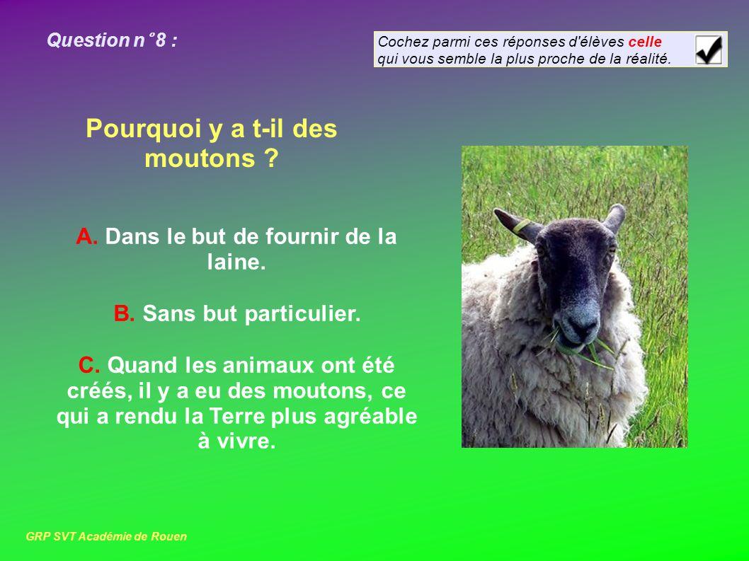 Question n° 8 : Pourquoi y a t-il des moutons .