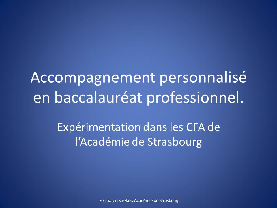 Accompagnement personnalisé en baccalauréat professionnel.