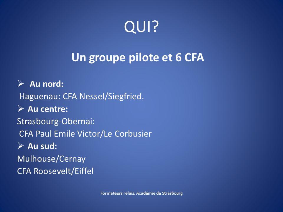 Un groupe pilote et 6 CFA Au nord: Haguenau: CFA Nessel/Siegfried.