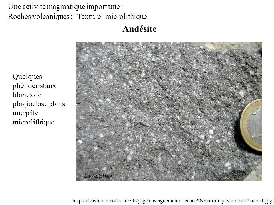 Une activité magmatique importante : Roches volcaniques : Andésite Texturemicrolithique http://christian.nicollet.free.fr/page/enseignement/LicenceSN/