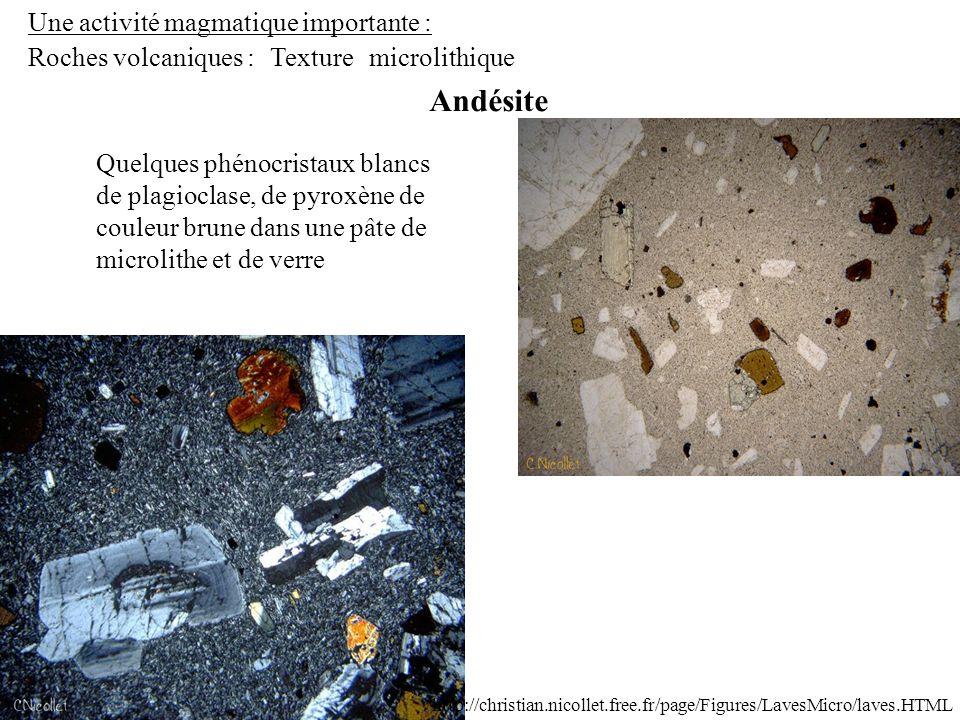 Une activité magmatique importante : Roches volcaniques : Andésite Texturemicrolithique Quelques phénocristaux blancs de plagioclase, de pyroxène de c