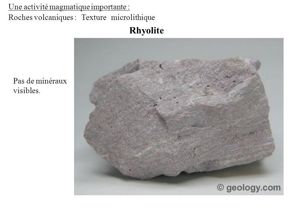 Une activité magmatique importante : Roches volcaniques : Rhyolite Texturemicrolithique Pas de minéraux visibles.