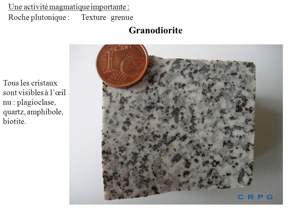 Une activité magmatique importante : Roche plutonique : Granodiorite Texturegrenue Tous les cristaux sont visibles à lœil nu : plagioclase, quartz, am