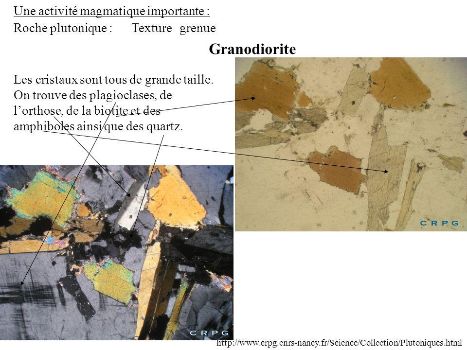 Une activité magmatique importante : Roche plutonique : Granodiorite Texturegrenue Les cristaux sont tous de grande taille. On trouve des plagioclases