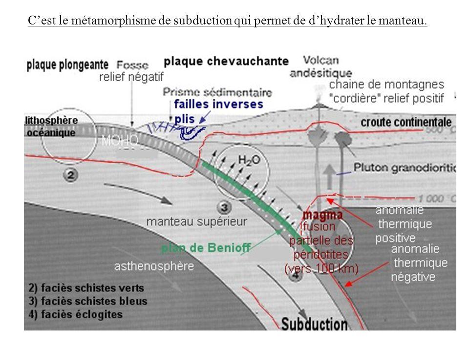 Cest le métamorphisme de subduction qui permet de dhydrater le manteau.