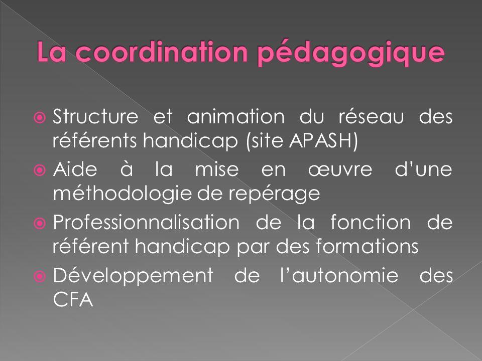 Structure et animation du réseau des référents handicap (site APASH) Aide à la mise en œuvre dune méthodologie de repérage Professionnalisation de la
