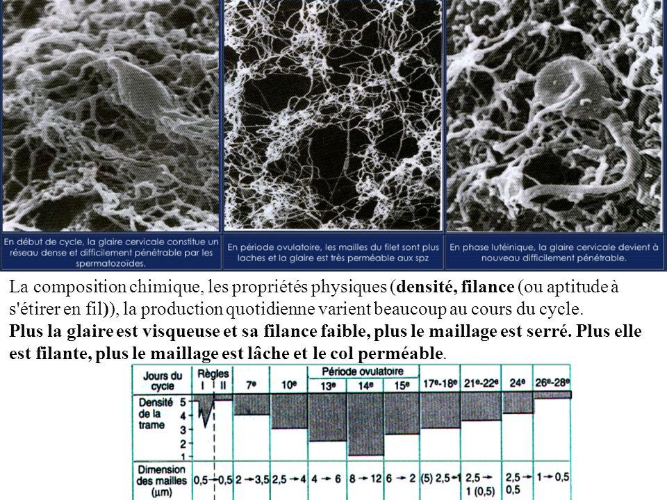 La composition chimique, les propriétés physiques (densité, filance (ou aptitude à s'étirer en fil)), la production quotidienne varient beaucoup au co