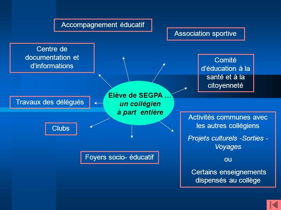 Elève de SEGPA … un collégien à part entière Accompagnement éducatif Centre de documentation et dinformations Clubs Foyers socio- éducatif Comité dédu