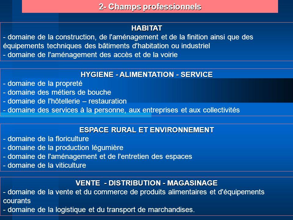 2- Champs professionnels HYGIENE - ALIMENTATION - SERVICE - domaine de la propreté - domaine des métiers de bouche - domaine de l'hôtellerie – restaur