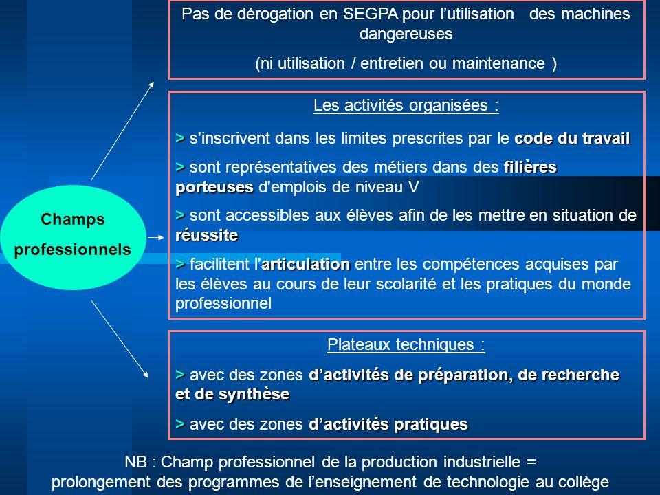 Champs professionnels Pas de dérogation en SEGPA pour lutilisation des machines dangereuses (ni utilisation / entretien ou maintenance ) Les activités
