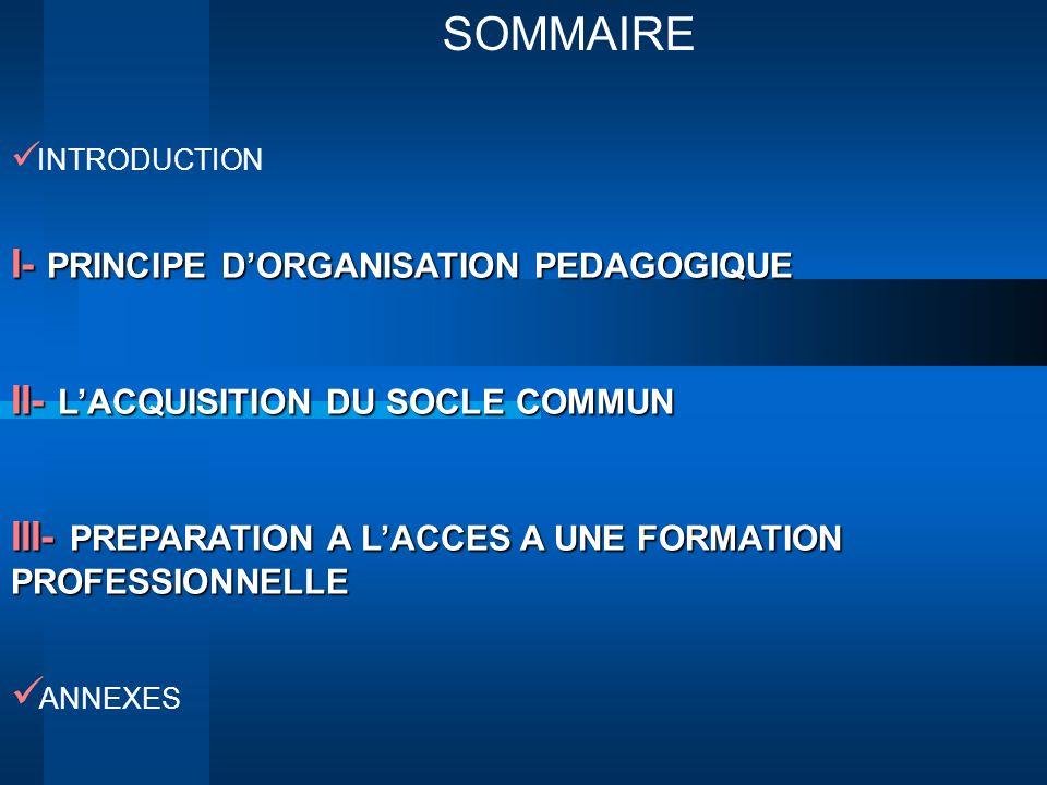SOMMAIRE INTRODUCTION I- PRINCIPE DORGANISATION PEDAGOGIQUE II- LACQUISITION DU SOCLE COMMUN III- PREPARATION A LACCES A UNE FORMATION PROFESSIONNELLE
