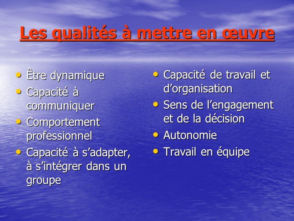 Les qualités à mettre en œuvre Être dynamique Être dynamique Capacité à communiquer Capacité à communiquer Comportement professionnel Comportement pro