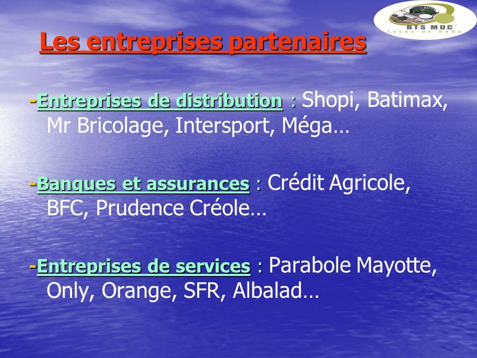 Les entreprises partenaires -Entreprises de distribution : -Entreprises de distribution : Shopi, Batimax, Mr Bricolage, Intersport, Méga… -Banques et